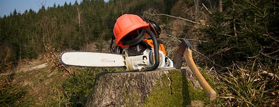 Silesia Universal Servis - Wycinka drzew i karczowanie